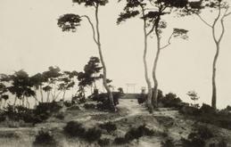 충청북도 충주 사직산 충주 신사(忠州神社)